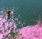 mel cliff jump